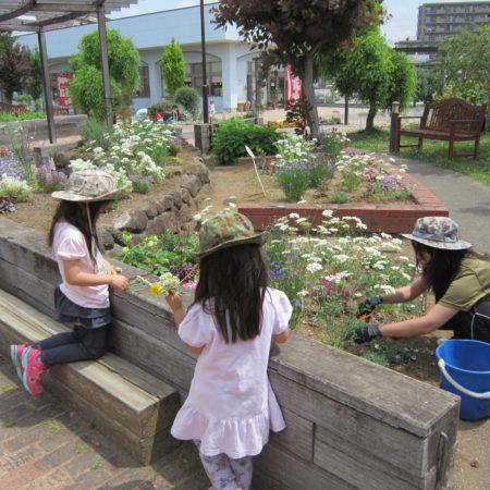 花の手入れをする子どもたち